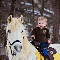 Valerie Hoke Pony Rides, LLC