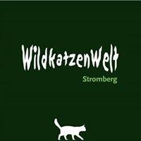 Wildkatzenwelt Stromberg