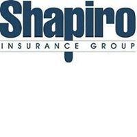 Shapiro Insurance Group - Lakeland Region