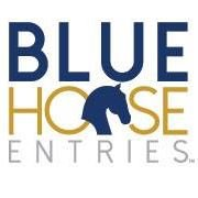 Blue Horse Entries