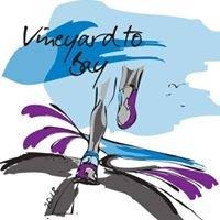 Vineyard to Bay 15k