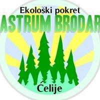 """Ekološki pokret """"CASTRUM BRODARE"""" Ćelije"""
