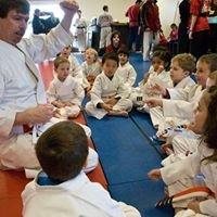 Martial Arts America - Rochester, NY