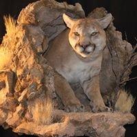 Southwest Wildlife Taxidermy Art