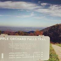 Apple Orchard Falls