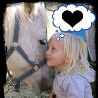Storybook Farm Ponies
