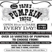 Papa's Pumpkin Patch