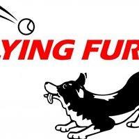 Flying Fur!