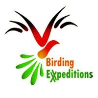 BirdingExpeditions