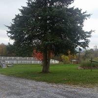 Still Meadows Enrichment Center and Camp