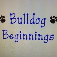 Bulldog Beginnings Preschool