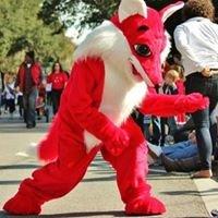 Red Cedar Elementary Foxes