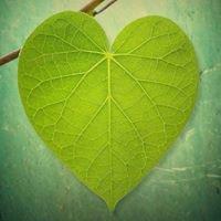 HeartSprings Community Healing Center