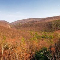 Bald Eagle State Forest