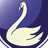 Swans International School Marbella