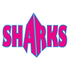 Savannah Sharks Allstar Cheerleading