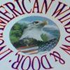 American Window And Door, Inc.