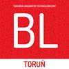 Business Link Toruń Toruński Inkubator Technologiczny