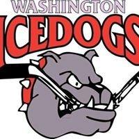 Washington Ice Dogs