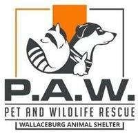 Wallaceburg Animal Shelter