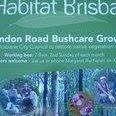 Brandon Road Bushcare Group, Runcorn