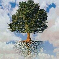 Aaron's Tree Care