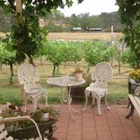 Wollombi Village Vineyard