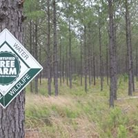 Ellen & Aaron's Certified Family Forest and Tree Farm