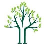 Arbor Valley Tree Service