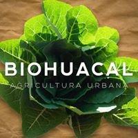 Biohuacal