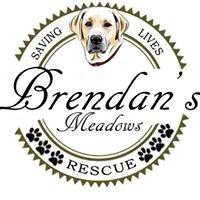 Brendan's Meadows Rescue, Inc.
