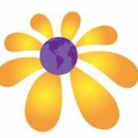 Floristería Global Sunflower
