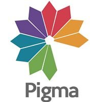 Pigma Renovations