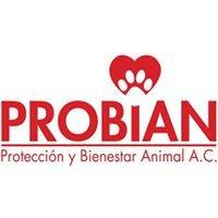 PROBIAN: Protección y Bienestar Animal A.C.