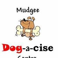 Mudgee Dog-a-cise Centre
