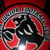 Leda Lions Junior FC