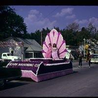 Hardin County Fluorspar Committee