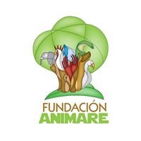 Fundacion Animare Leon