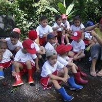 Escuela santisima trinidad