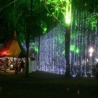 Fia Festival Nacional De Las Artes