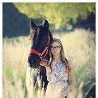 Tara Hamilton Photography