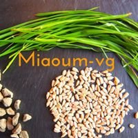 Miaoum-vg