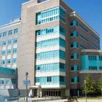 Department of Microbiology and Immunology (SUNY Buffalo)