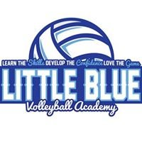 Little Blue Volleyball