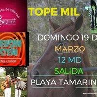 TOPE Villarreal