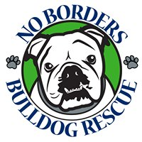 No Borders Bulldog Rescue