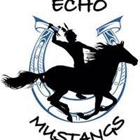 Echo Company Mustangs 2-10 Infantry Regiment