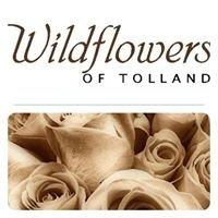 Wildflowers of Tolland - Tolland CT Florist, Flower Shop, Weddings