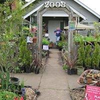 Pierce Street Gardens, Eugene OR