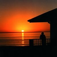 White Sands Beach Resort - Anna Maria Island, Florida